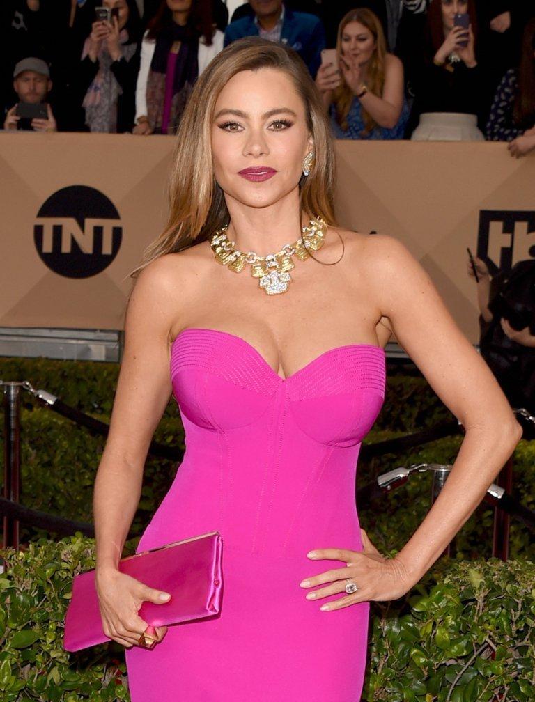 София Вергара блистала в Лос-Анжелесе в розовом платье