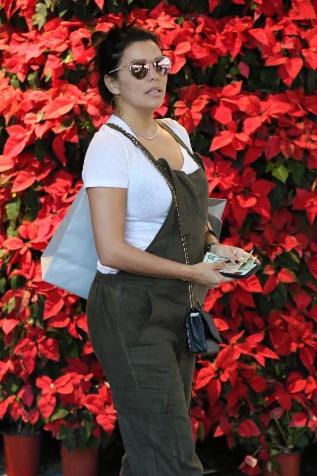 Беременная Ева Лонгория устроила шоппинг в Майами
