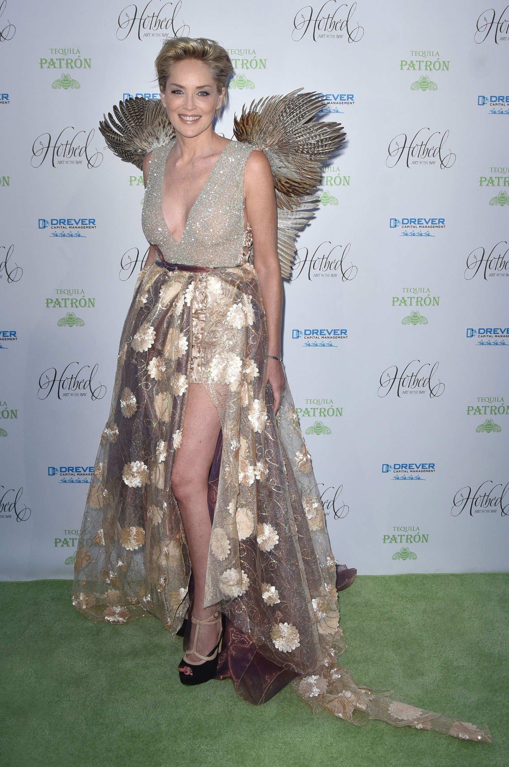 Шэрон Стоун появилась на премьере своего нового фильма в невероятном образе